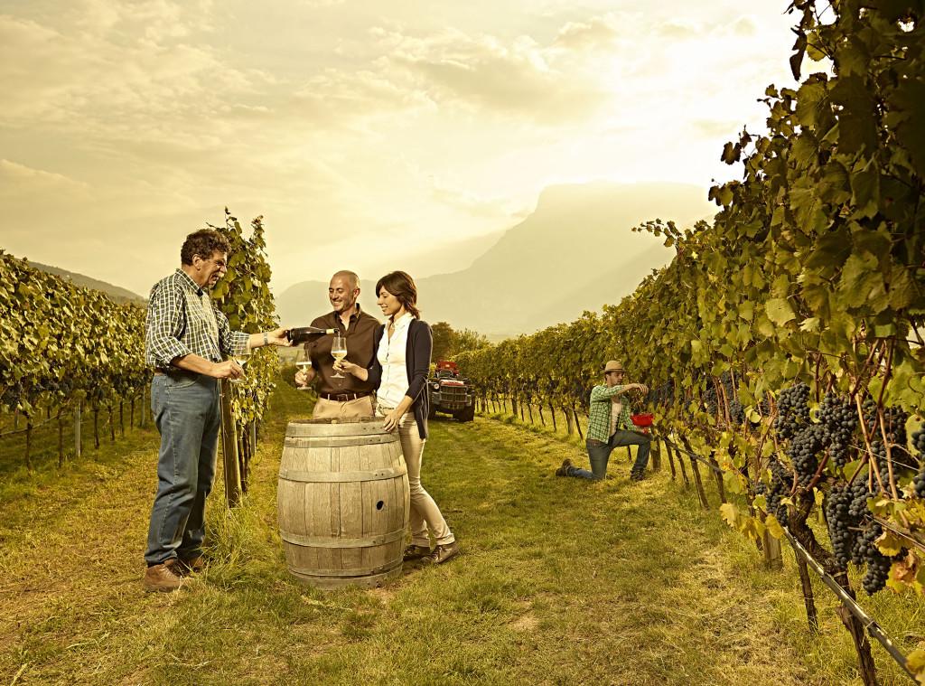 Wijnen uit Trentino Noord Italië
