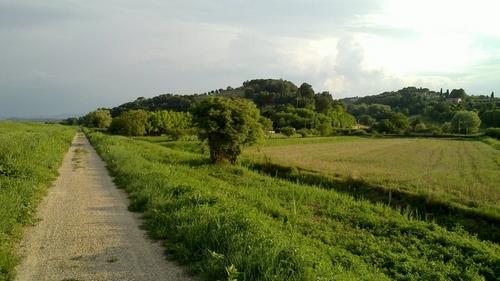 In het voorjaar is het pad groen en goed te doen. Maar er kan altijd een buitje vallen natuurlijk