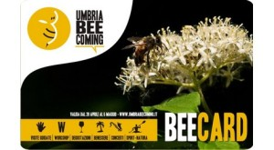 umbria-beecoming-umbrie