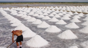 zoutfeater2