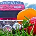 Canti Vaganti haalt geluid uit fruit