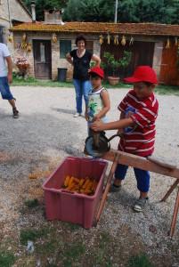 Kinderen van 5 tot 8 leren spelenderwijs over de herkomst van hun eten