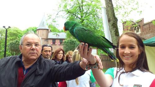 Salvatore en de papegaaien
