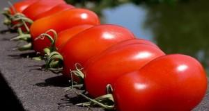 Soorten Italiaanse tomaten
