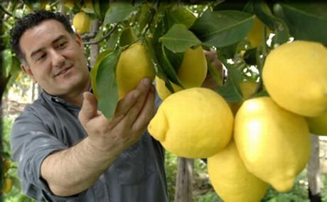 citroenen amalfi