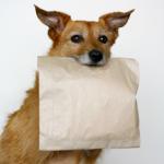 doggie-bag
