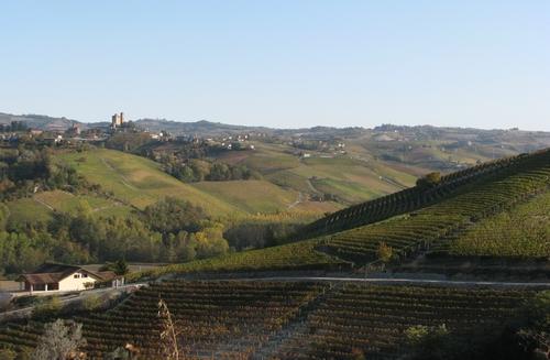 Herfstuitzicht op Serralunga d'Alba, Piemonte