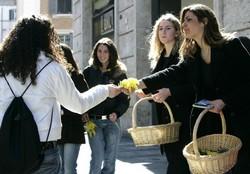 Mimosa bloemen worden uitgedeeld in Rome tijdens La Festa della Donna
