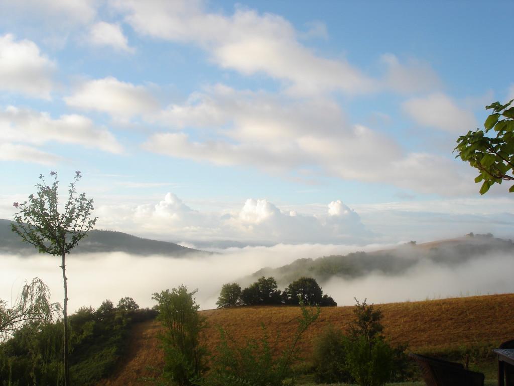 ochtend-mist