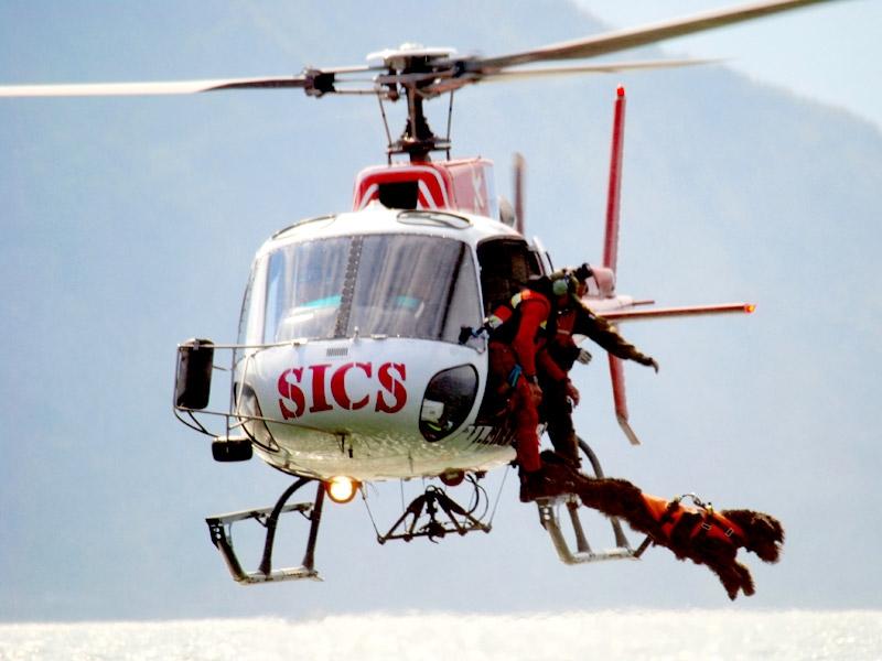 reddingshonden springen uit helikoper